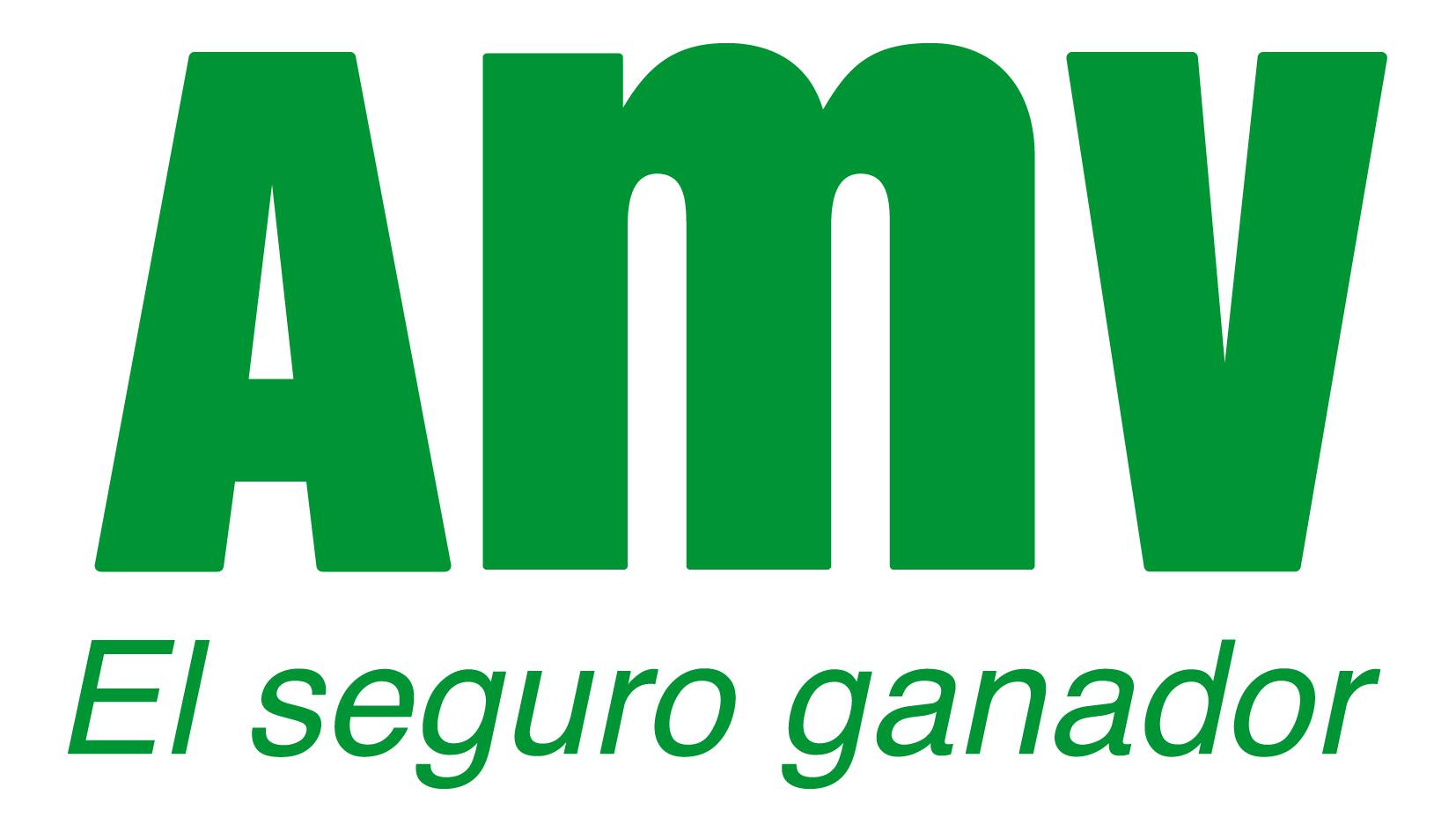 AMV Seguros